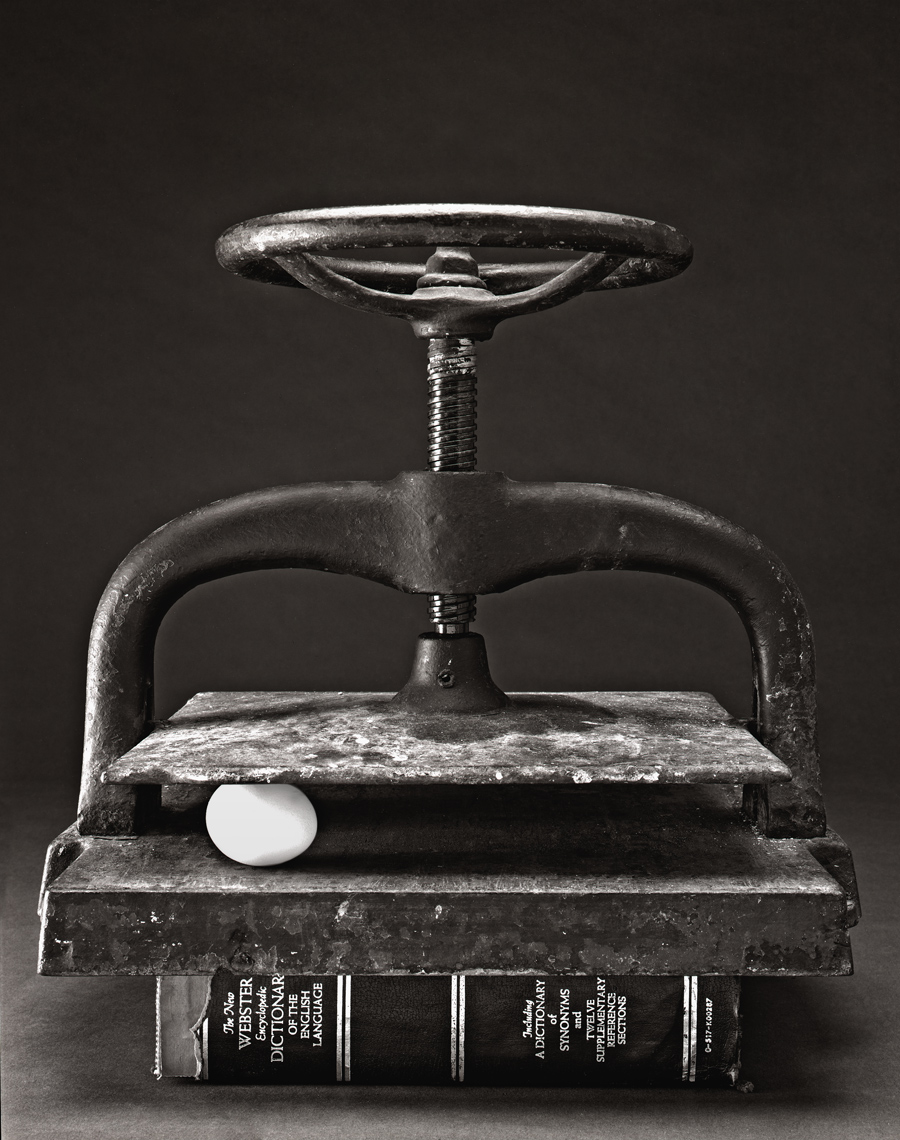 davidhoptman-photo-platinum-palladium-EGG-PRESS-PP.jpg