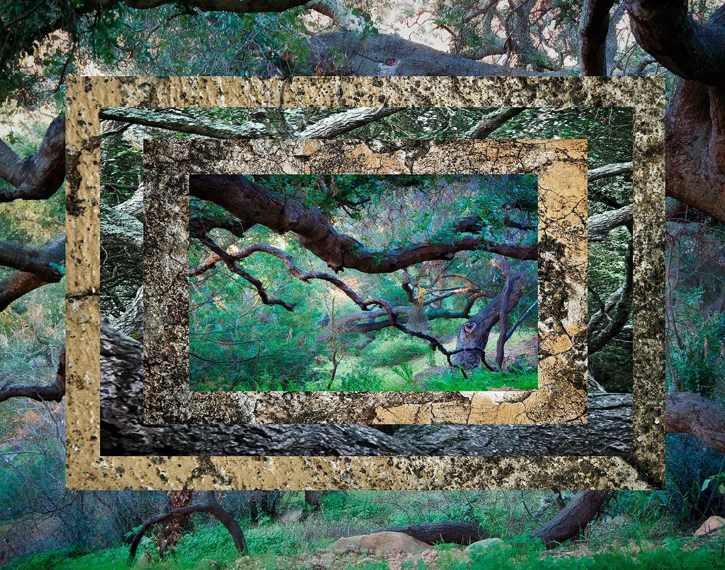 davidhoptman_photo-fine-art-FRAME3bstblrbQ