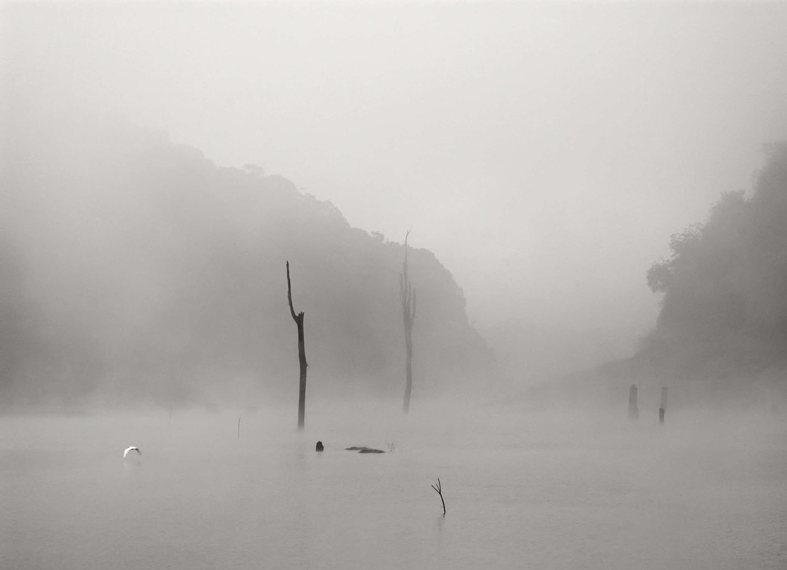 davidhoptman_photo-landscapes--india-fog-periar20inchq